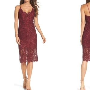 Bardot Midi Lace Cocktail Dress (size 8)